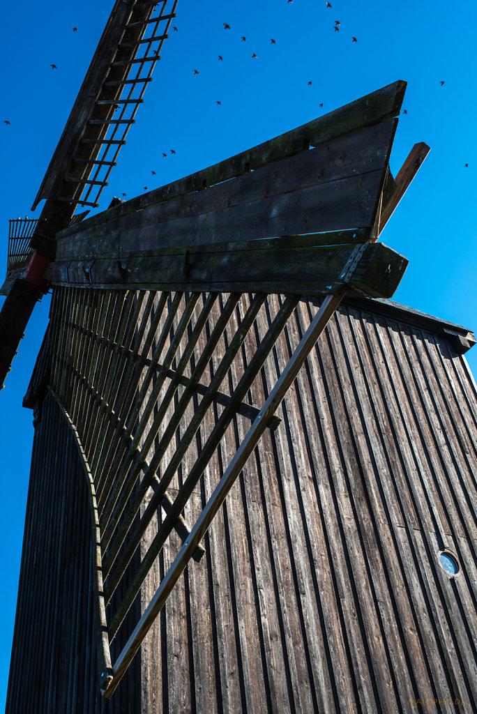 Mühlenflügel-1
