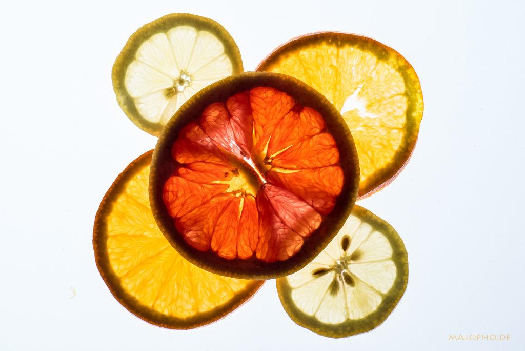 Grapefruit oben-1