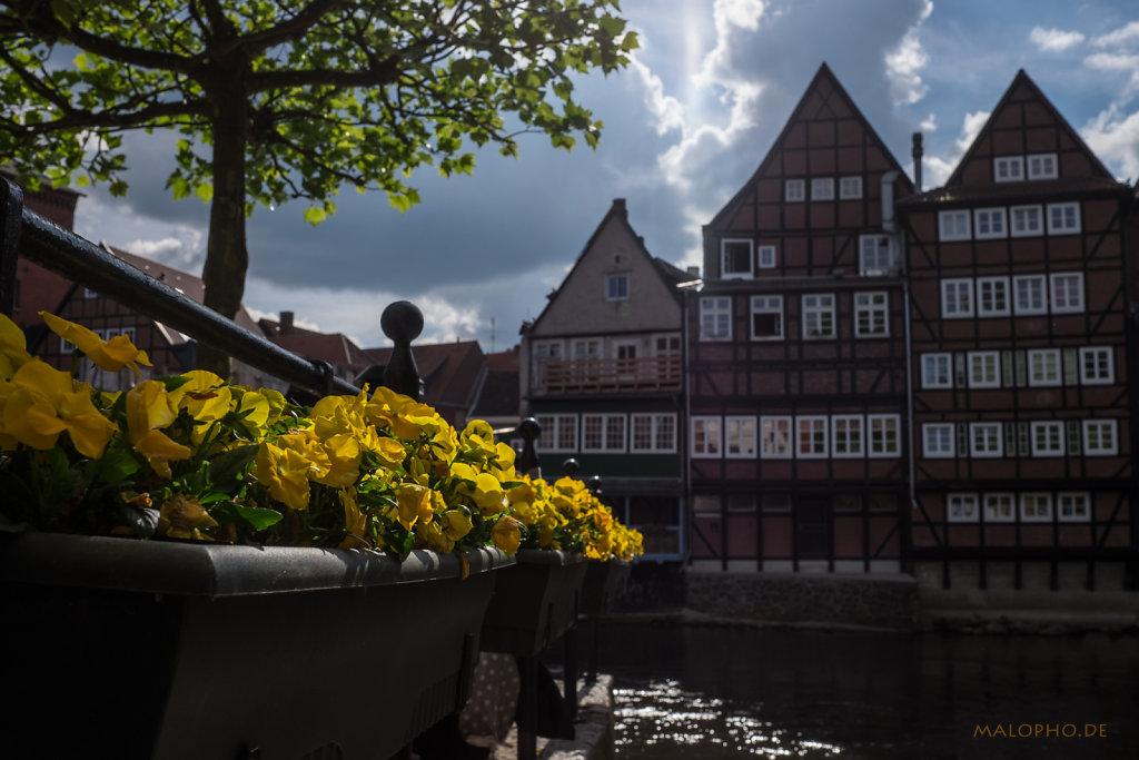 Lüneburg 2014