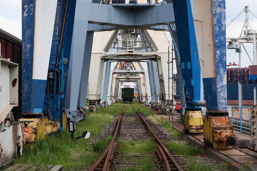 Hafenmuseum 2012