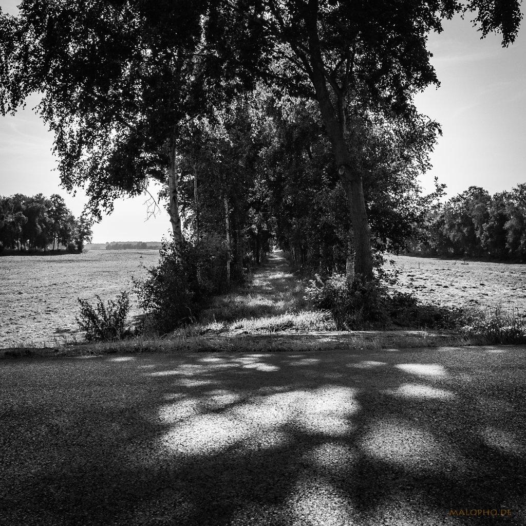 09 | 14 - Moorweg