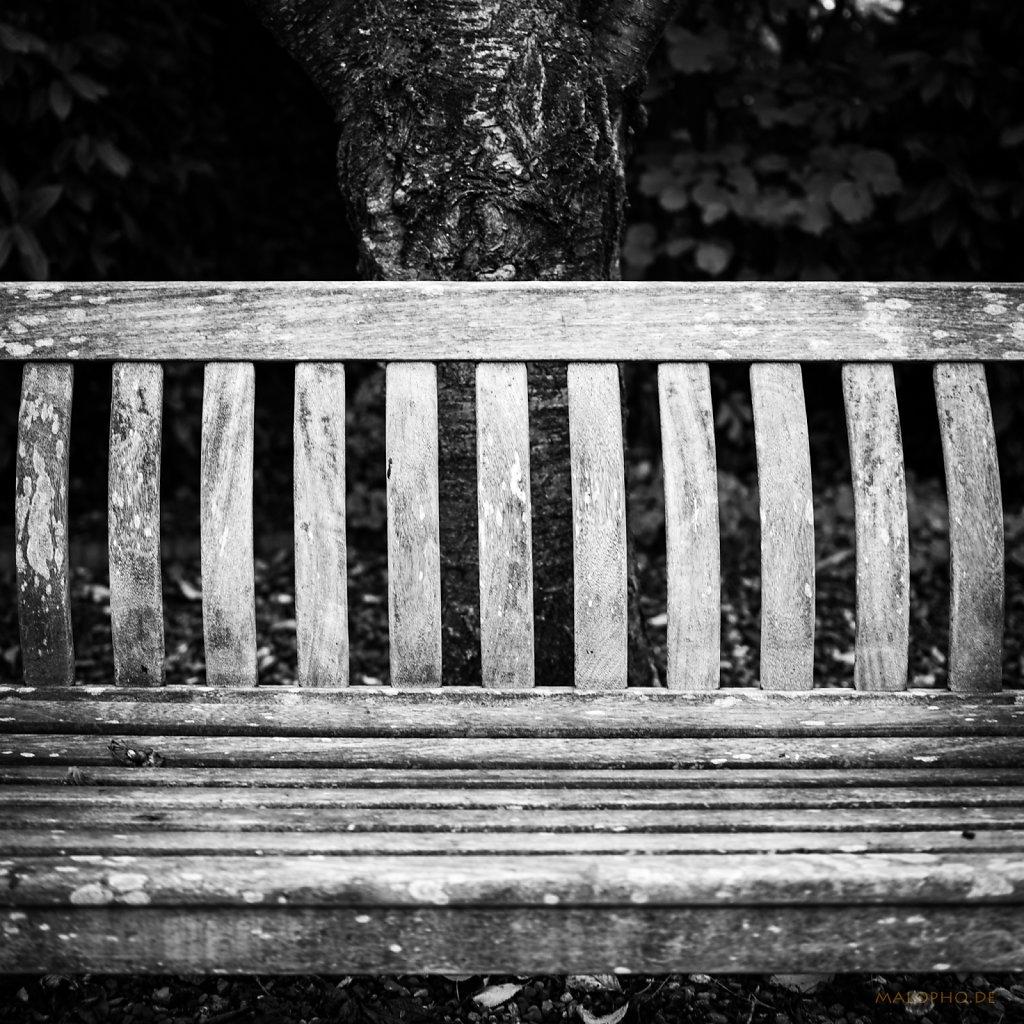 10 | 05 - Sitzstrukturen