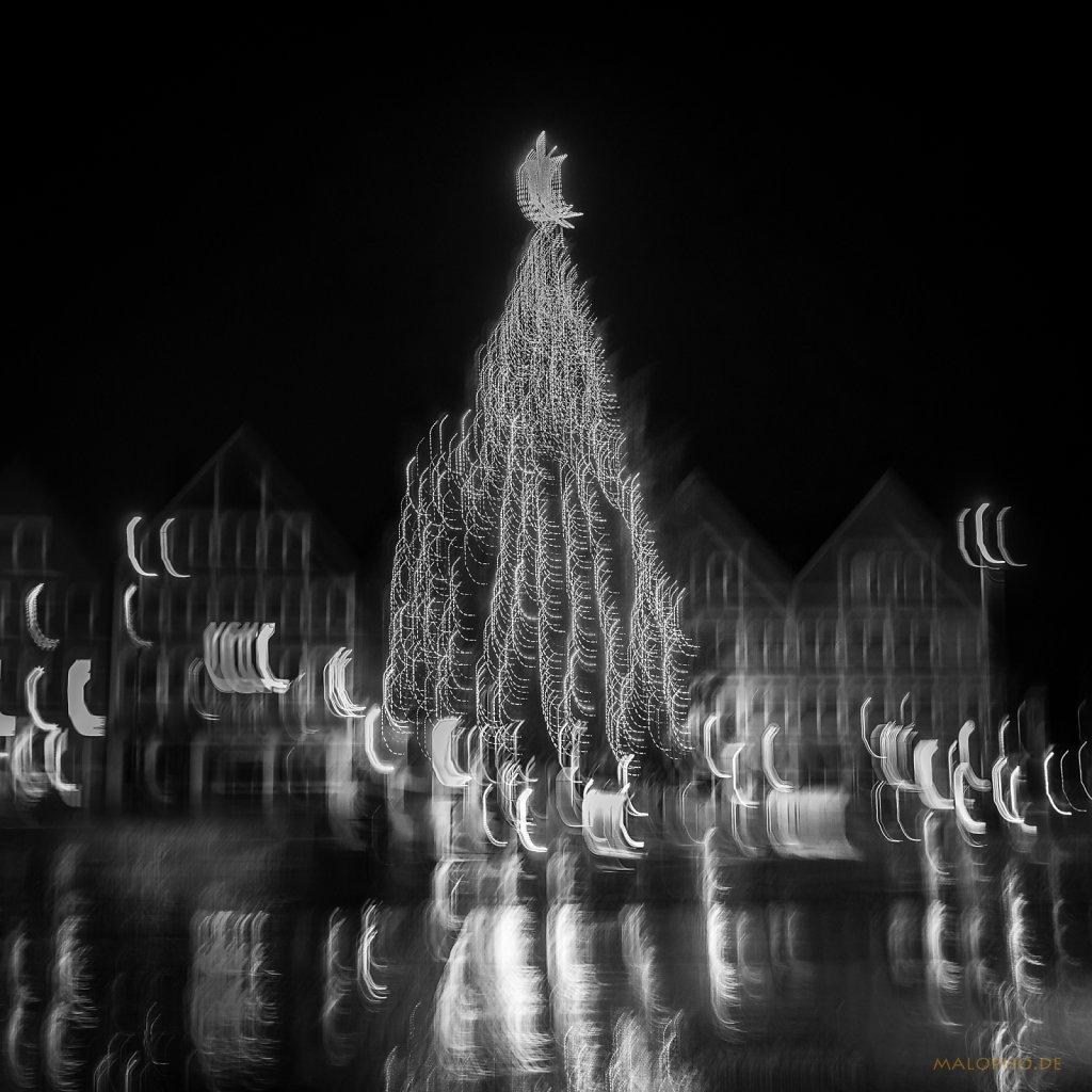 12 | 24 - Weihnachtsbaum