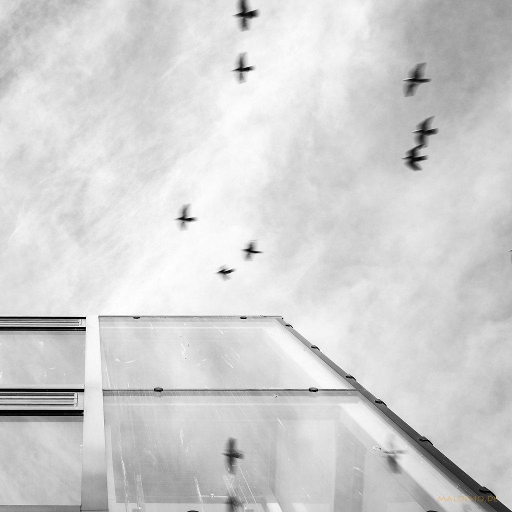 01 | 23 - Überflieger
