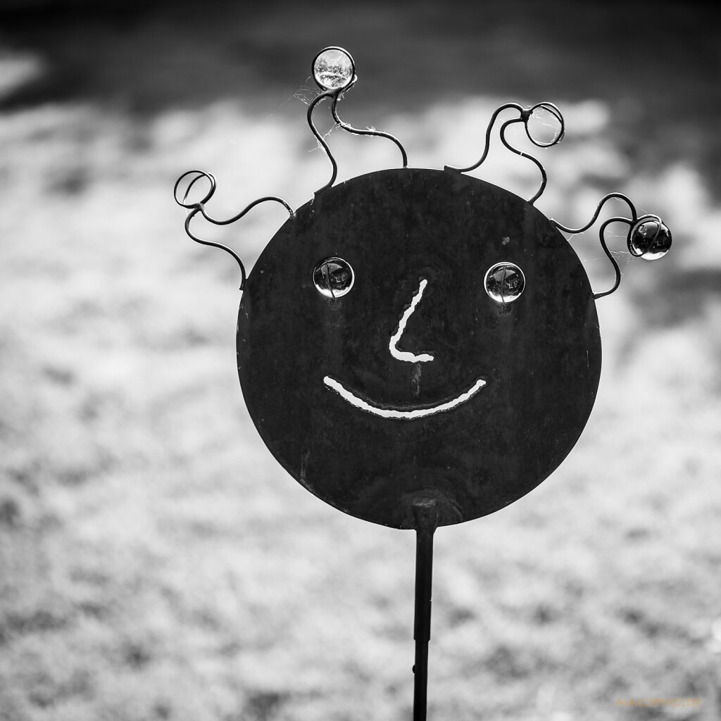 06 | 04 - Das Lächeln